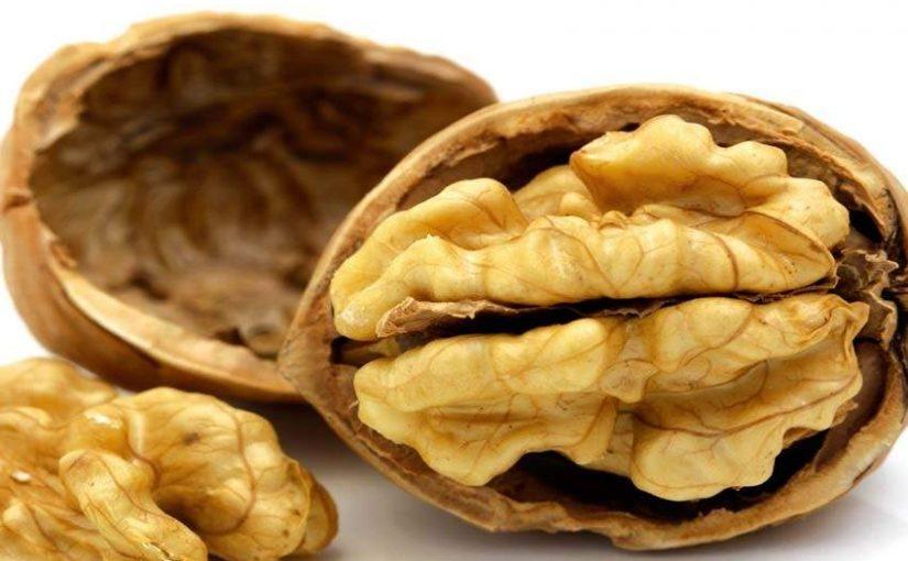 Una dieta rica en nueces modifica el microbioma intestinal y mejora la salud