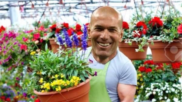 Zidane deja el Real Madrid: los memes después de su renuncia como entrenador